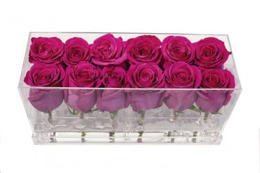 12 Fresh Roses in Acrylic Box